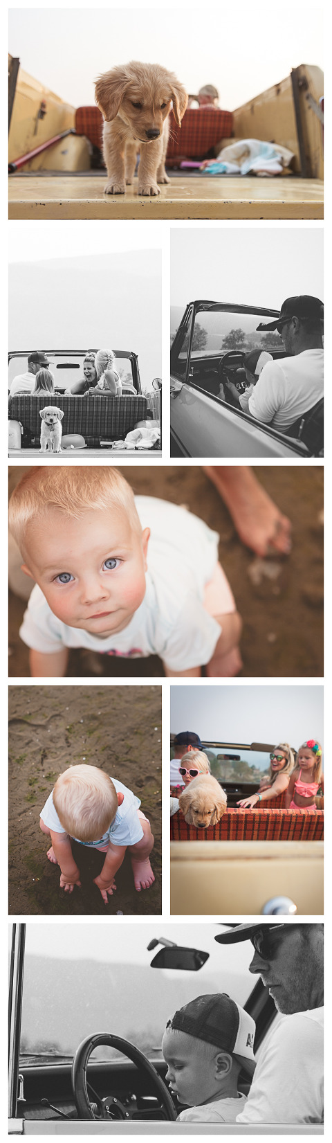 beach session with a scout, puppy, kids in the sand, Olson Family in Sunland, WA, lifestyle family session by Hailey Haberman