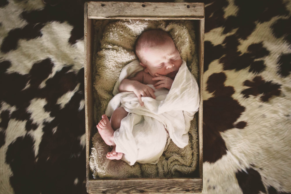 baby on cow hide- lifestyle newborn photography by Hailey Haberman in Ellensburg WA