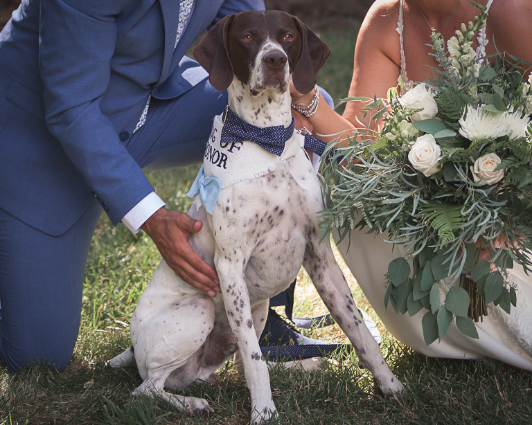 bride and groom with dog, Jerome & Michelle married at McInosh barn in Ellensburg photographed by Hailey Haberman Ellensburg Wedding Photographer