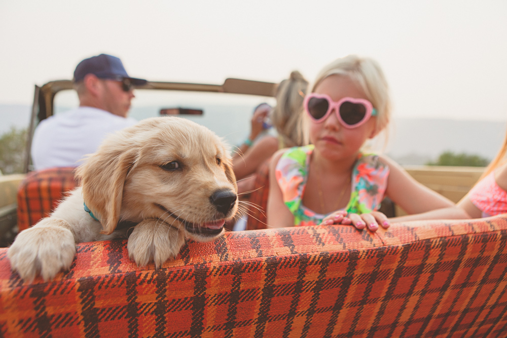 beachy family with puppy- lifestyle photography by Hailey Haberman in Ellensburg WA